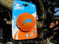 Chuckit Hydro Squeeze Ball large