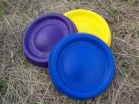 Easy Glide DuraFoam Disc 9''