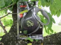 Giant L