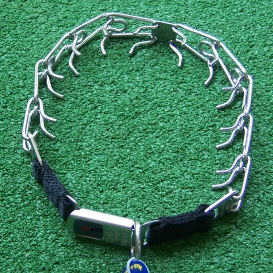 Stachelhalsband oder Erziehungshalsband für Hunde