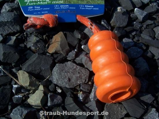 Der Fun-Mot mini nach Prof. Ekard Lind.