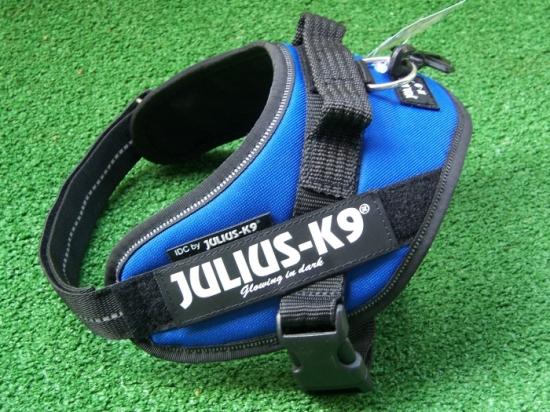 IDC-Powergeschirr von Julius-K9 in blau und mini