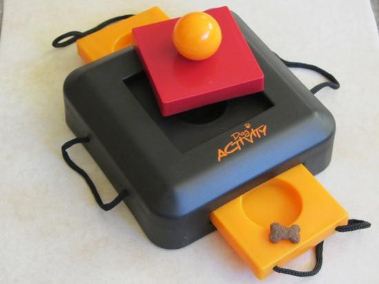 Die Gamble Box als Intelligenzspielzeug für Anfängerhunde