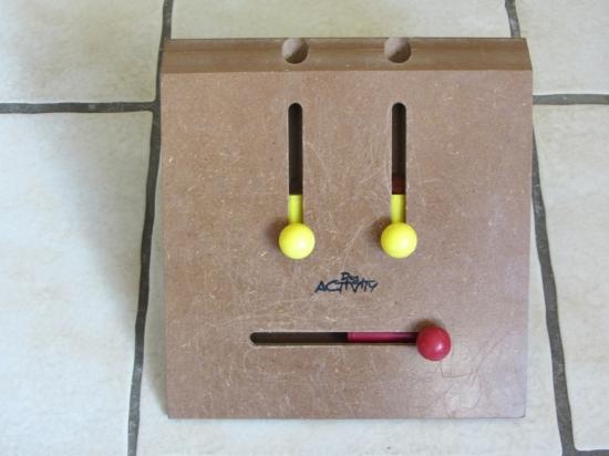 Der Kicker als Intelligenzspielzeug für Hunde!
