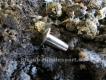 Buchschraube Edelstahl M4 10mm