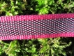 gummierte Sportleine pink 20mm breit 1m ohne Handschlaufe