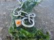Halskette medium 2 Ringe (Edelstahl matt) L=39cm