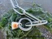 Langgliedkette mit 2 Ringen Edelstahl matt 62cm