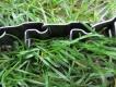 Neck-Tech Sport Erziehungshalsband Edelstahl schwarz matt 60cm