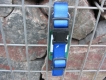 Nylonhalsband Basic Click 45-65cm blau