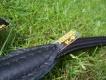 Führleine rund 1,2m 10mm schwarz Julius-K9